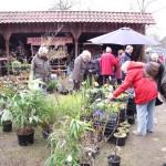 Bauernmarkt (10)