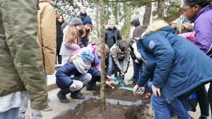 Fünftklässler pflanzen einen Baum_01